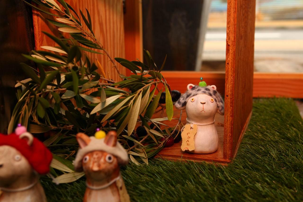 キノコ動物シロクマ(針山)